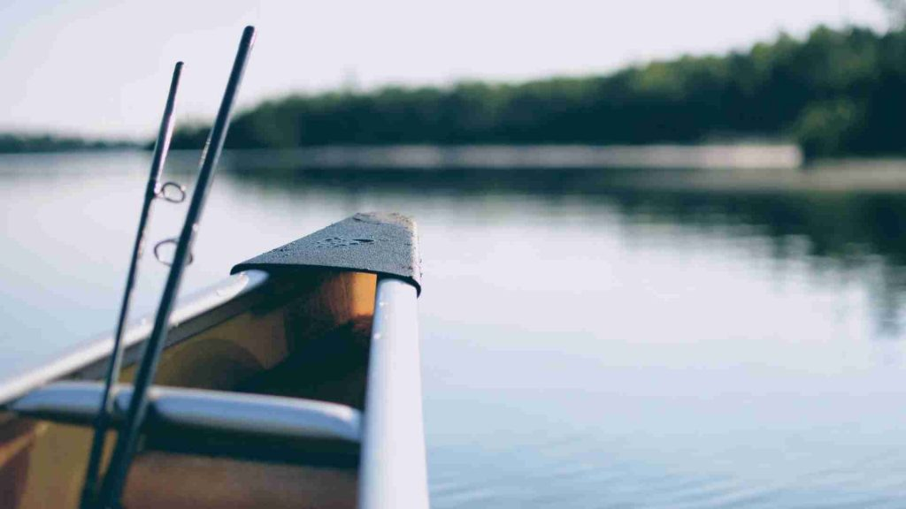 Best Surf Fishing Rods 2021: Reviews & Buyer's Guide
