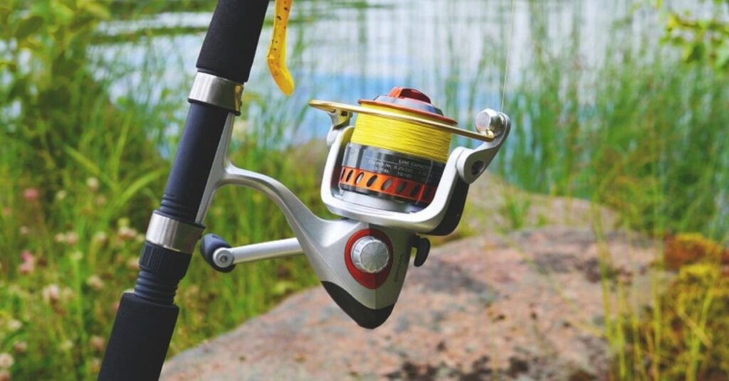 5 Best Cheap Fishing Reels Compared In 2021